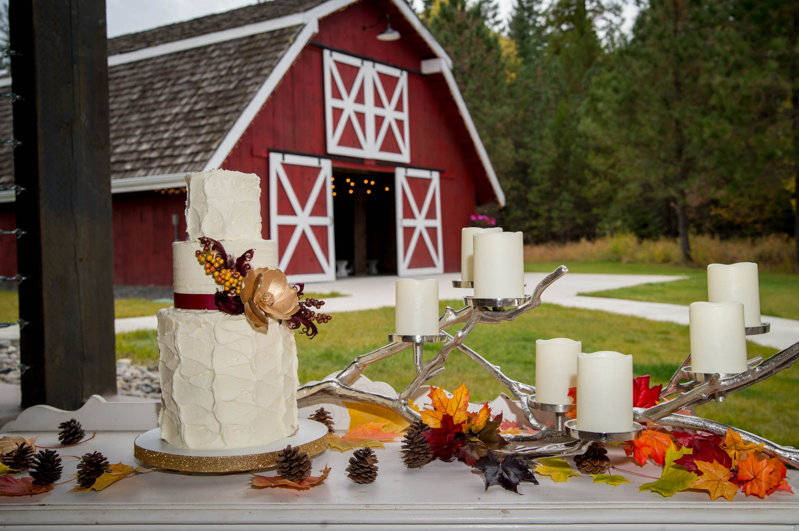 pastry and more wedding cake photography by luba timber river ranch