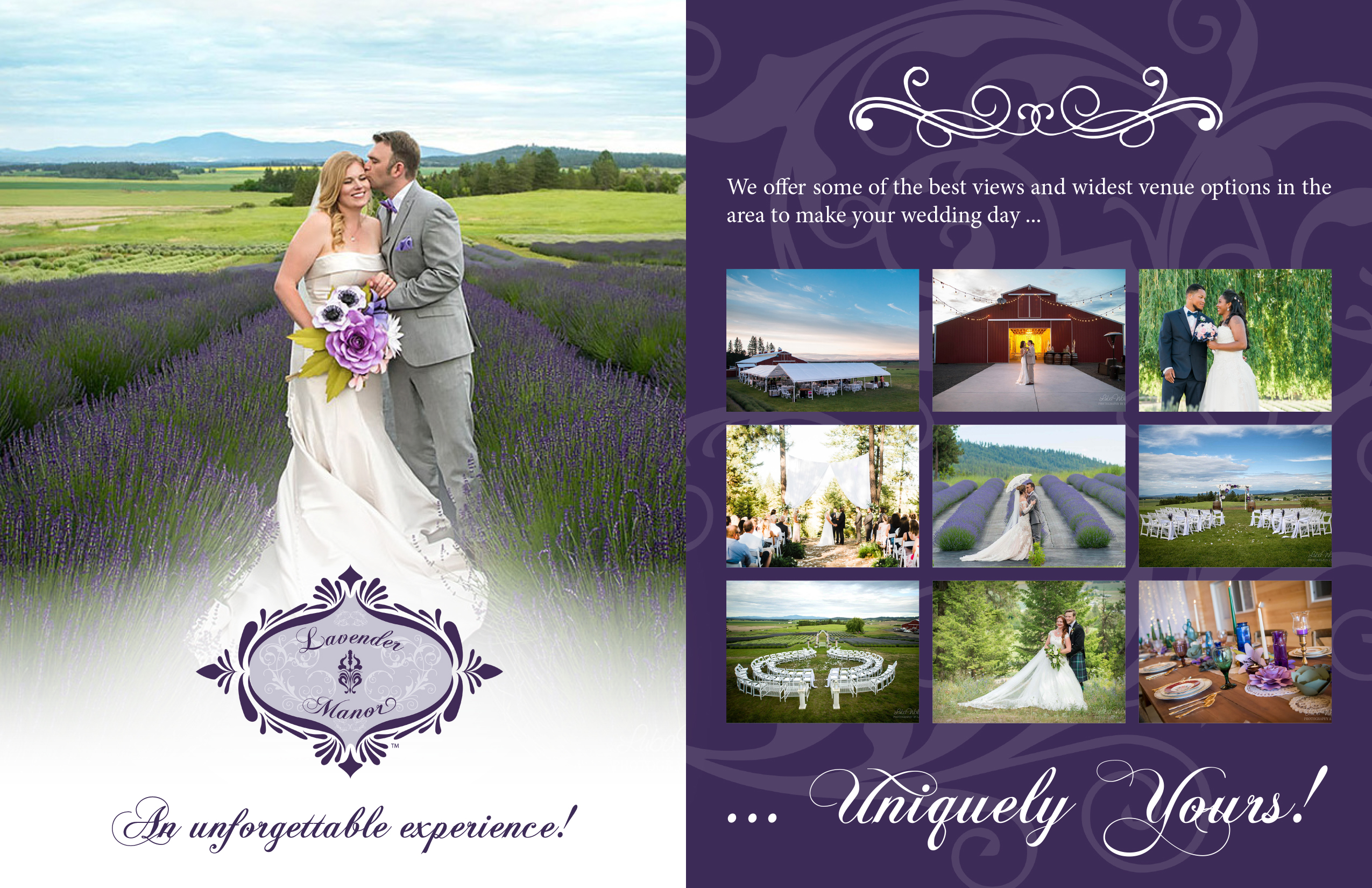 "<a href=""/vendors/wedding-lodging-facilities?id=""/>http://theweddingresourceguide.net/index.php?option=com_content&amp;view=article&amp;id=339</div></div></div></a>"